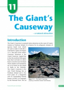 Giant's Causeway Case Study eBook